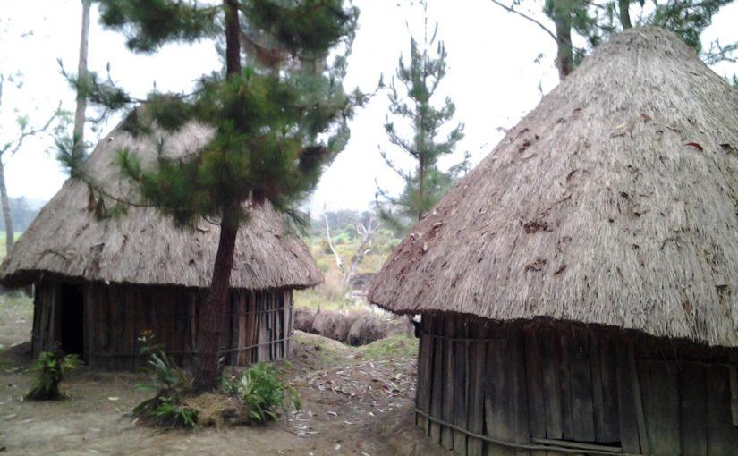 Rumah adat di mana kah ini?